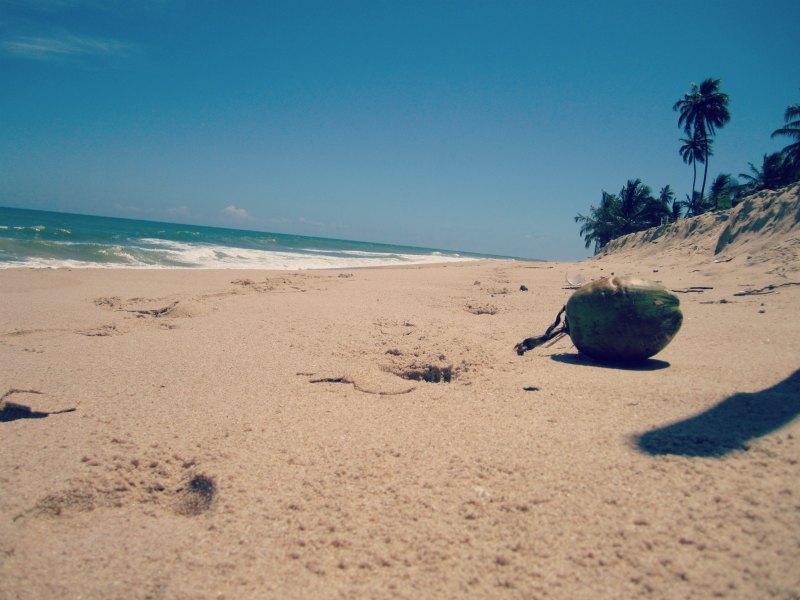 { Praia do Forte }